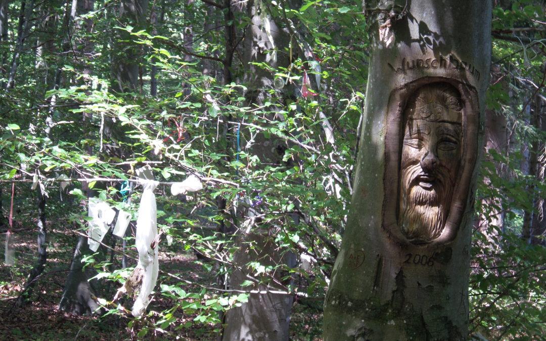 Ausländer im Wald