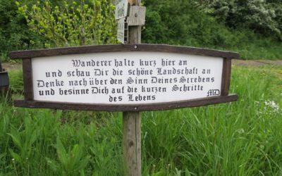 Der Moselsteig – Etappe 6: Schweich – Mehring